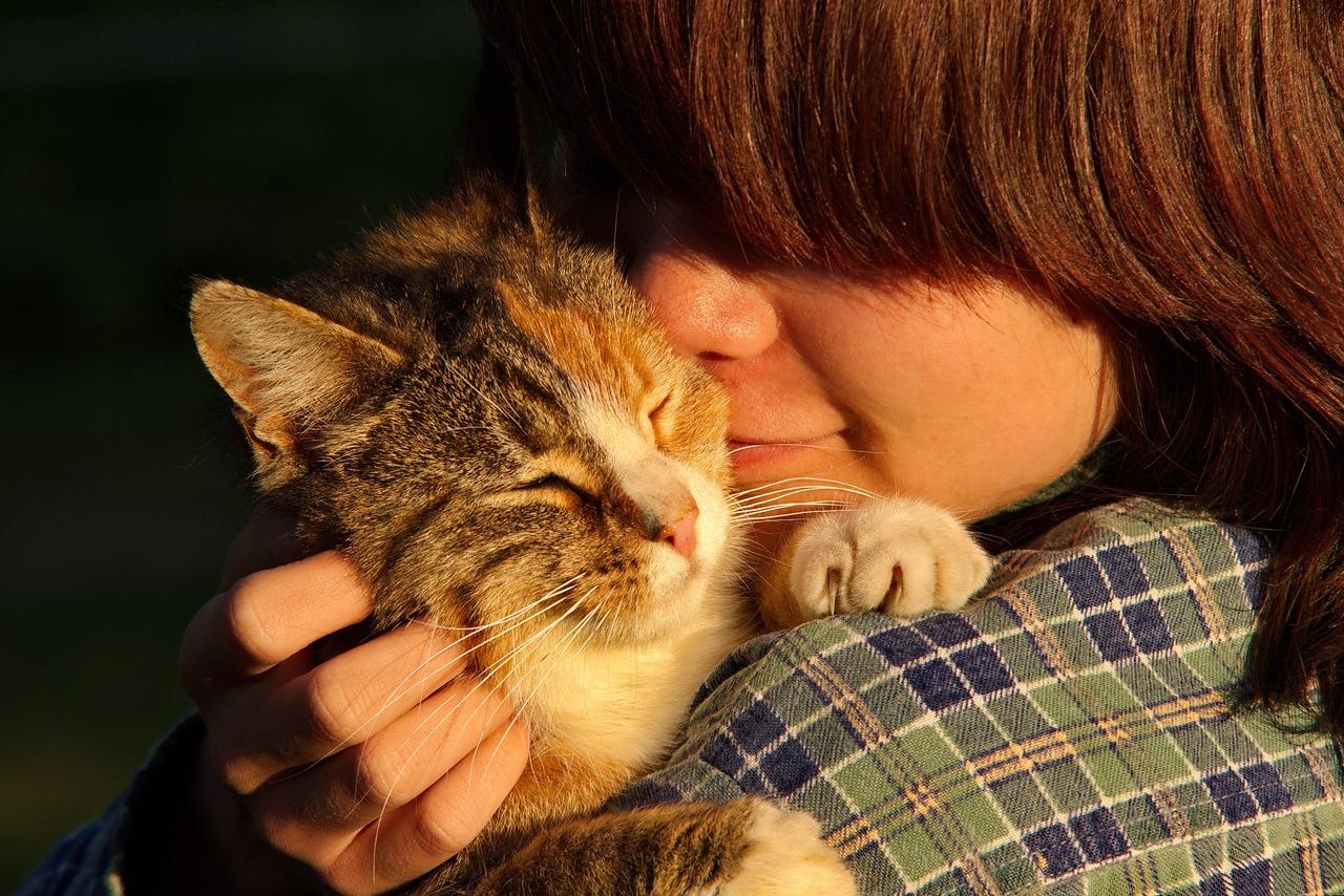 Shabbat Blessings for Pets