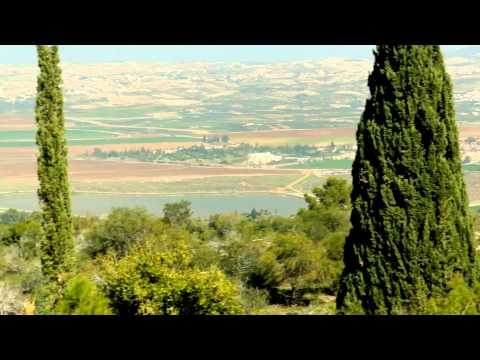 פארק איילון- סרטון הסבר