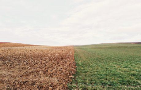חטא האדמה- מערך לימוד