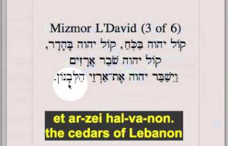Learn How to Sing the Ashkenazi Kabbalat Shabbat Service